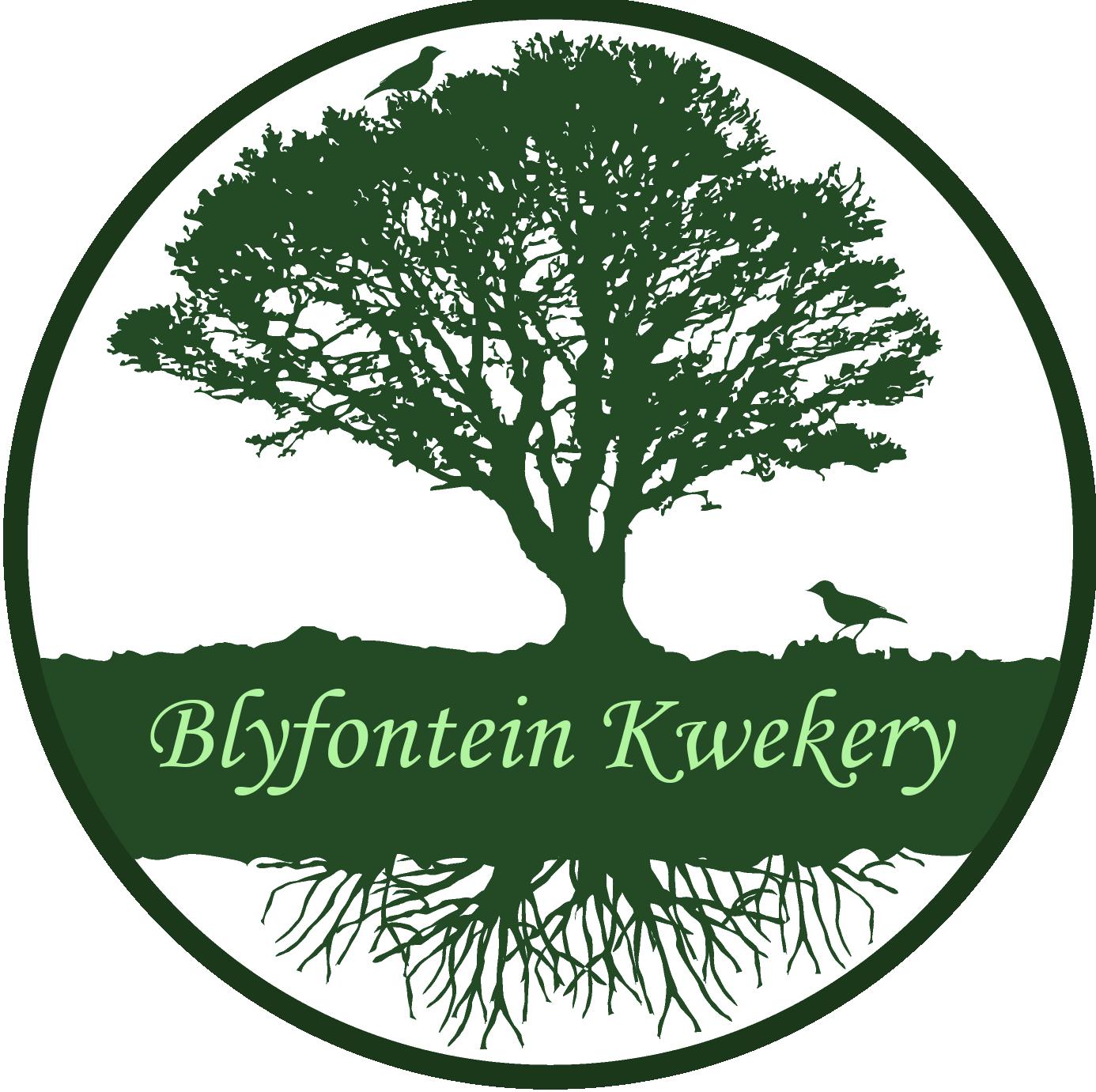 Blyfontein